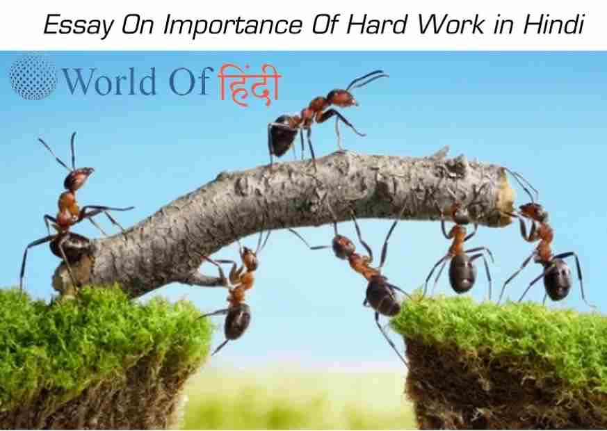 Essay On Importance Of Hard Work in Hindi