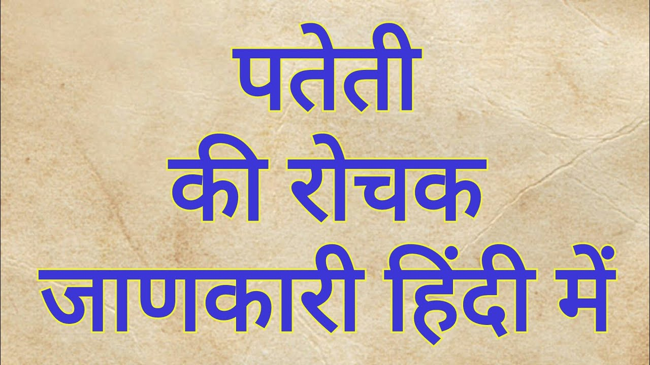 essay on pateti festival in hindi