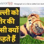 Paragraph on a Cat is called Lion Aunty in Hindi | हिंदी में बिली को शेर की मौसी कहते है